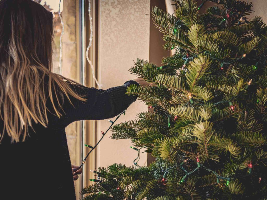 11 Best Living Christmas Tree for The Ultimate Christmas Decorations
