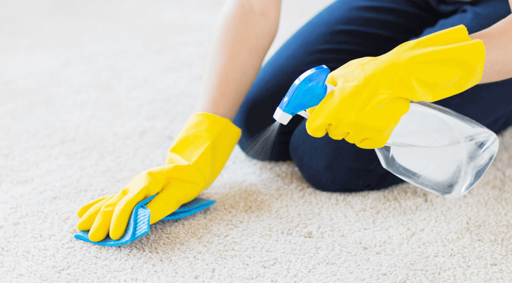 How To Get Grease Out Of Carpet: 5 Easy & Effective Step By Step Methods