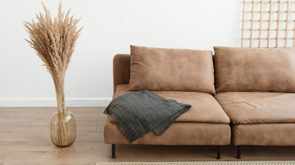 how to clean suede couch