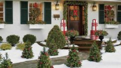 Prepare Your Simple Yard for a Christmas Party